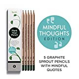 Sprout lápices plantables - Mindful Edition | Pack de 5 lápices de grafito de madera natural | producto ecológico sin de lápices