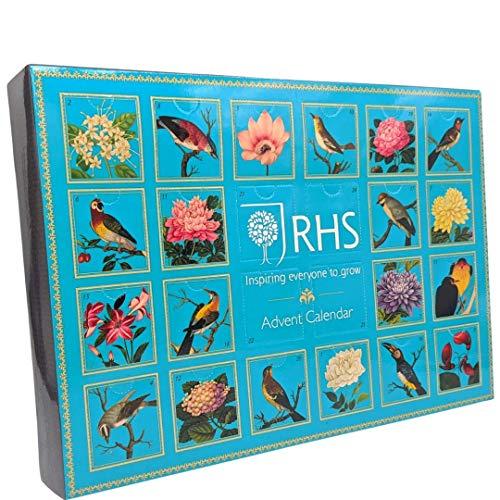 Tea Advent Calendar 2020 - 24 giorni di sapori assortiti - selezione di bustine di tè di Natale...