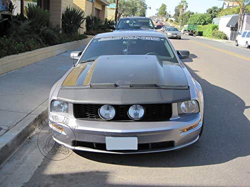 Cobra Auto Accessories – Brasier para capó de Coche, Compatible con Ford Mustang GT 05 06 07 08 2005…