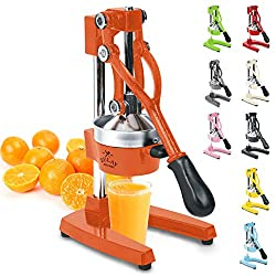 Best Citrus Juicers under 100