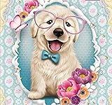 DIY 5D Diamant Gemälde nach Zahlen Set, Diamant Art Full Kits Hund mit Brille Aufkleber Diamonds Painting Strass Stickerei Kreuzstich Kits Kunst Handwerk Leinwand Wanddekoration Aufkleber 30 x 30 cm