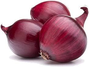 David's Garden Seeds Onion Red Burgundy SL1398 (Red) 200 Non-GMO, Organic Seeds