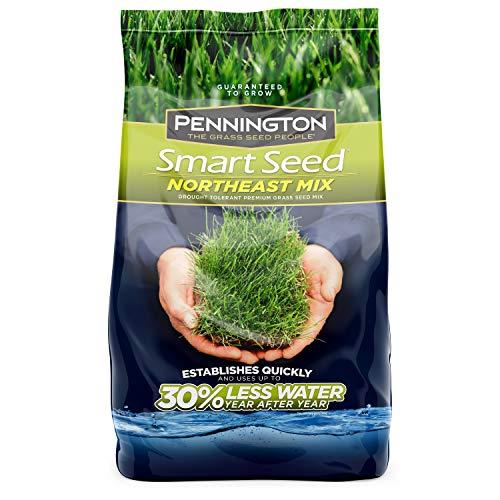 Pennington Smart Seed Northeast Mix Grass Seed, 7 lb