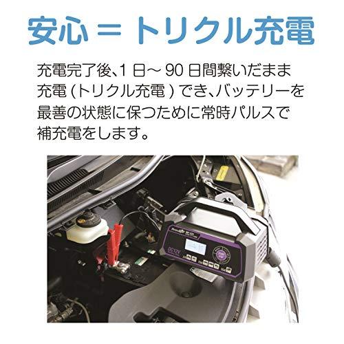 メルテックプラス全自動パルスバッテリー充電器(バイク~ミニバン・小型トラック・小型船舶)12V専用定格15Aバッテリー診断機能付維持充電(トリクル充電)方式AGM/ISS車充電可能長期保証3年MeltecMP-220