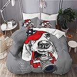 RUBEITA Juego de Ropa de Cama 3 Piezas Microfibra,Retrato de un Perro Basset Hound en Gorra roja con cámara sobre Fondo Gris,1 Funda Nórdica y 2 Funda de Almohada (Cama 140x200)