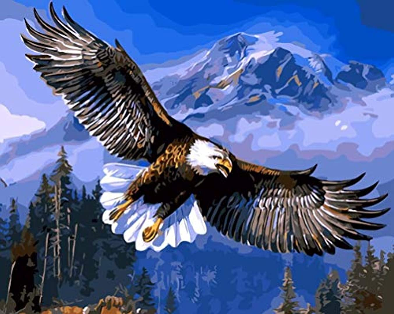 SHUAXIN DIY Acrylic Painting,Paint by Numbers Kits by Hand Colouring for Adults Kids Beginner Gifts - Flying Eagle Pattern 16x20 inches Without Frame