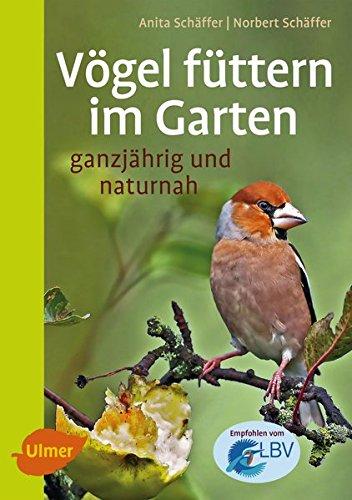 Vögel füttern im Garten: Ganzjährig und naturnah