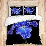 MOBEITI Parure de lit avec Housse de Couette en Microfibre,Fleur Iris Drapeaux Herbes vivaces bulbes périanthe ovaire paisible Serein surréaliste Sublime Spirituel inspirant