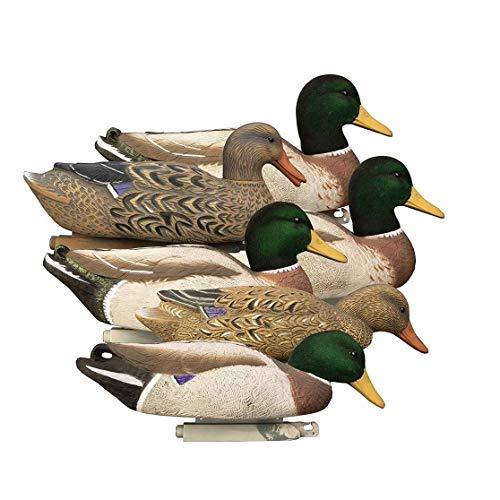 WING Lot de 6 leurres de Canard ailé pour la Chasse, Les Canards colvert pour étang et Champ, décoration de Jardin Vif, Aide aux Enseignants, équipement de Chasse