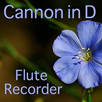 Cannon in D: Flute Recorder