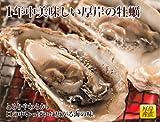 北海道 厚岸 産 殻付 牡蠣 【生食用・獲れたてを直送でお届け】 LLサイズ (1個 120g以上) × 15個 ( 牡蠣 ナイフ付き)