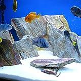 Piedra de l/ámina negra natural de 5 kg para una roca de acuario vivero
