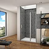 Mamparas de Ducha Frontal Puerta Transparente Abatible Perfil gris mate Cristal Templado 5mm Antical, 100x185cm