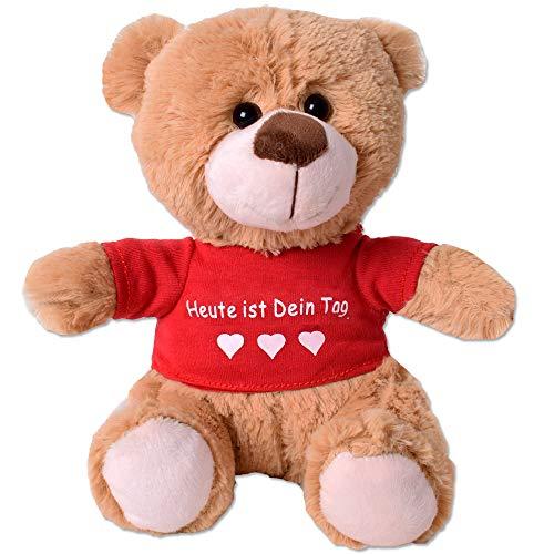 TE-Trend Teddybär Teddy Plüsch Bär Plüschteddybär Kuscheltier T-Shirt Spruchbär 25cm Geschenk Hellbraun Heute ist Dein Tag