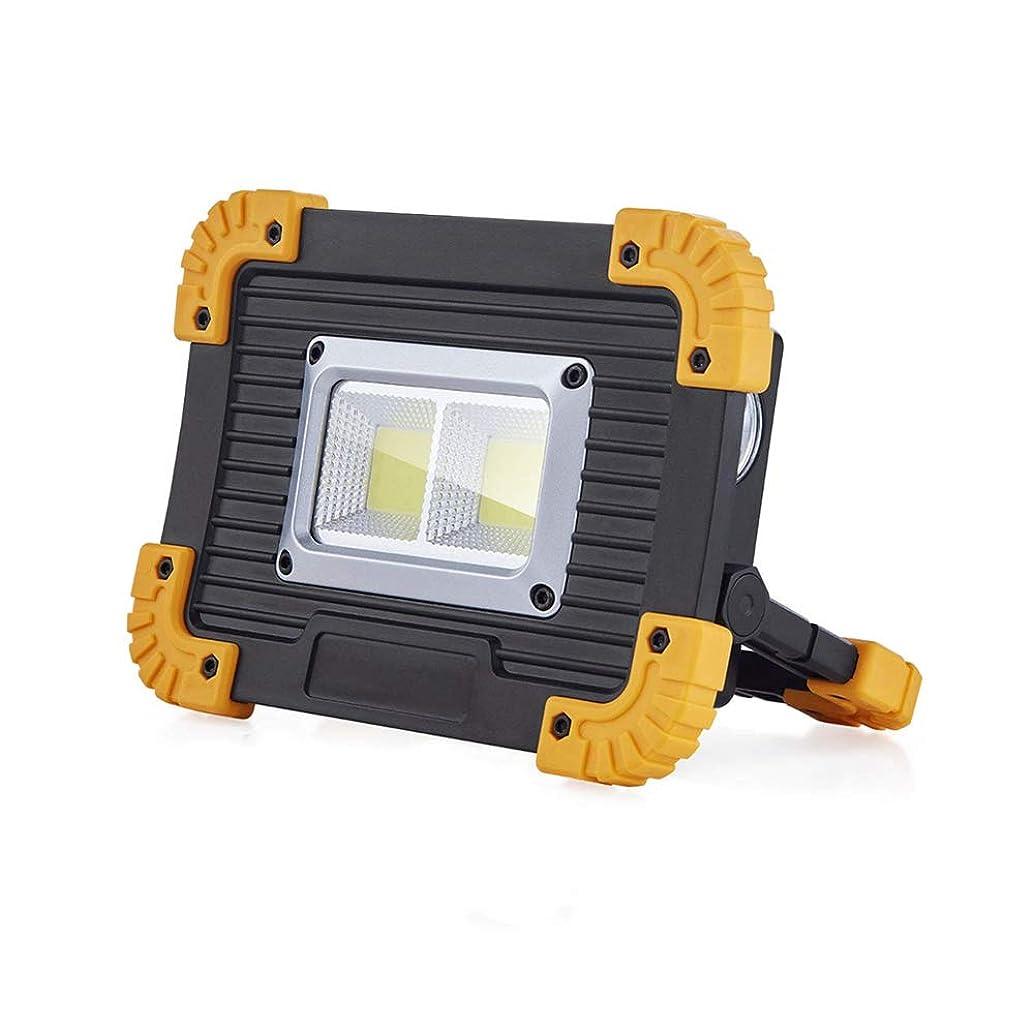馬鹿げた読みやすい争うMybasport 投光器 作業灯 LED ライト 充電式 20W COBチップ LED投光器 懐中電灯 小型?軽量 折り畳み式 4つ照明モード ポータブル LED作業灯, 屋外照明 夜間作業 車の修理用 夜釣り USB充電ポート 野外灯 ワークライト LL812