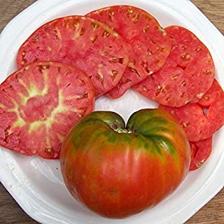 German Red Strawberry Tomato Seeds - 30+ Rare Non-GMO Organic Heirloom Vegetable Garden Seeds