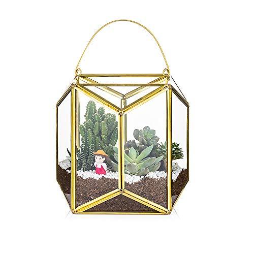 Portable Glass Geometric Terrarium Container, Medium Modern Wedding Cneterpieces Flower Pot, Tabletop Window Sill Decor Hanging Balcony Planter DIY for Succulent Fern Moss Air Plants Miniature Fairy