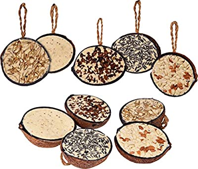 dobar 10Filled Coconuts 5Varieties (Hanging Bird Feeder–All Year Round Fat Food Wild Bird Food–Wild Bird Single Pack 1x 2Kg by dobar