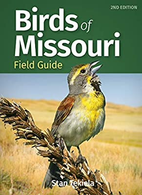 Birds of Missouri Field Guide (Bird Identification Guides) by Adventure Publications