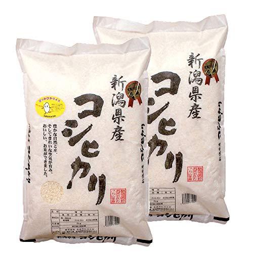 《令和元年新米》【受注精米】令和元年産新潟県産コシヒカリ 5kg×2袋 (精米)