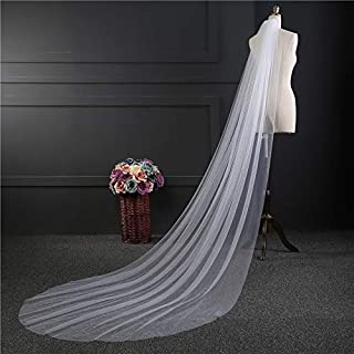 RLYBDL Cheap Real Photos 3M or 2M White/Ivory Wedding Veil One-layer long Bridal Veil Head Veil Wedding Accessories Hot Sell (Color : Ivory, Item Length : 300cm)