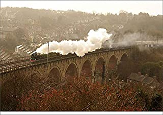 Media Storehouse A1 Poster of The Tornado steam Locomotive is seen Carrying her First Passengers Through (19598750)