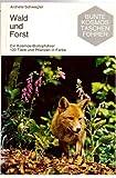 Wald und Forst. 120 Tiere u. Pflanzen in Farbe