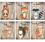 Woodland Nursery Decor for Boys - Animal Pictures Wall Art - Baby Room Animal Prints on Shiplap - Bear Deer Fox Raccoon Owl Squirrel Decor - SET OF 6-8x10 - UNFRAMED