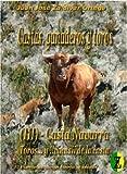 CASTA NAVARRA DE TOROS BRAVOS  III de III: Ultimo capitulo de la apasionante historia del toro y su casta navarra