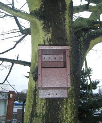 Bird Nest Box open front for Blackbirds from SignLine