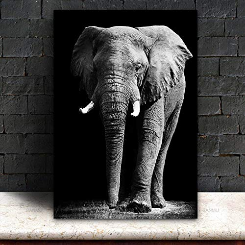 wZUN Elefante in Bianco e Nero Pittura Soggiorno Stampa Poster Arte Moderna Decorazione della casa Immagine Stampa su Tela 50x75 cm