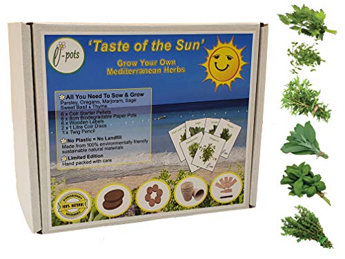 Grow Your Own Taste of The Sun Eco Gift Set | Mediterranean Herbs Plant Kit | 6 x Herb Seeds Plus Everything Needed to Sow Your Indoor Kitchen Garden | Plastic Free Fun Gardening Present