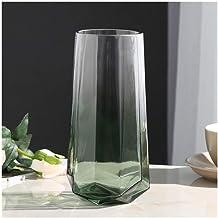 Flowers Vase Cylindrical Vase Hydroponic Flower Arrangement Glass Vase Home Wedding Decoration (21.5 * 8.5cm) Flower Bottle
