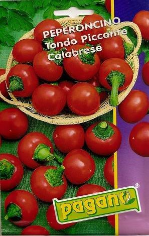 Peperoncino Piccante Calabrese-Chili-Samen-1 mg