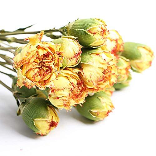 Trockenblumen-Nelke Natürliche luftgetrocknete Dekoration Blumenstrauß Blumenarrangement Nelken Blumenstrauß Karneval (roter Rand auf gelb)