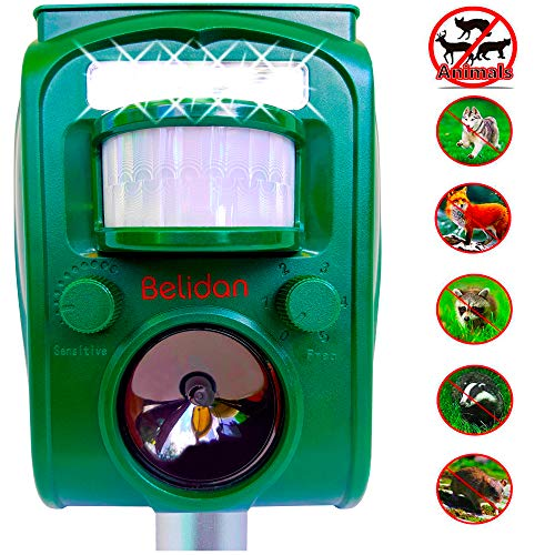 Belidan Animal Repellent Ultrasonic Outdoor Animal Repeller - Dog Rats Raccoon Repellent Skunk Repellent Mice Cat Repellent - Animal Deterrent Device Solar Powered - Motion Sensor, Alarm, LED Lights