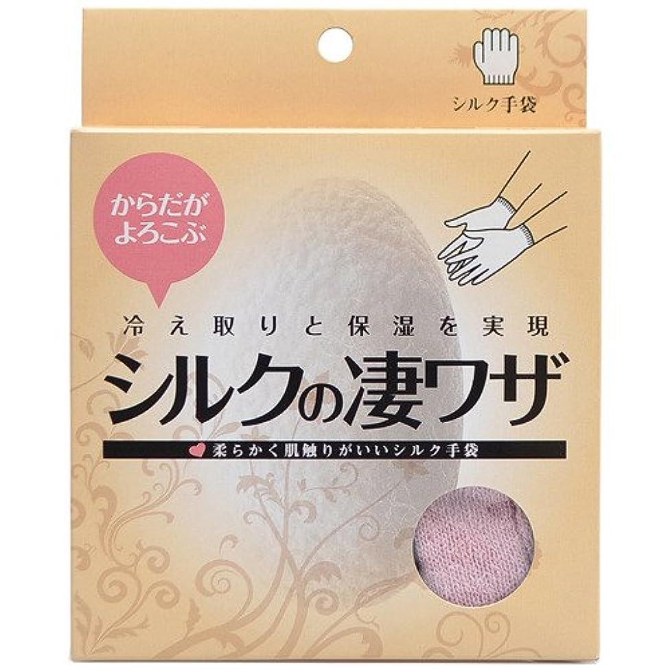 建築浴適切なシルクの凄ワザ シルクDE手袋 ピンク 日用品 ハンドケア ハンドトリートメント手袋 [並行輸入品]