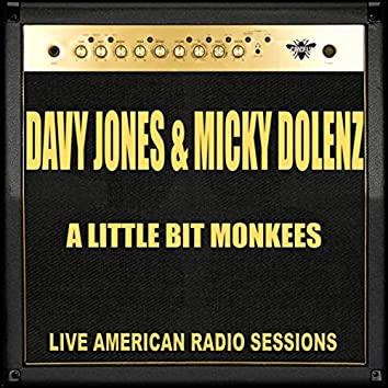 A Little Bit Monkees (Live)