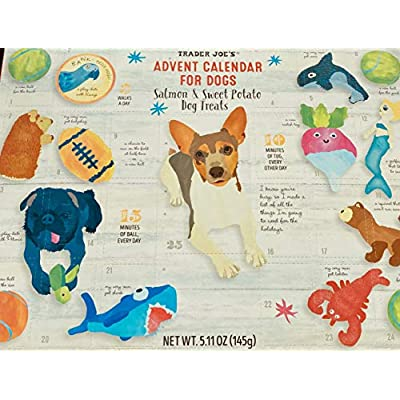 dog treat advent calendar 2020