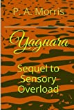 Yaguara: The Sequel to SENSORY OVERLOAD