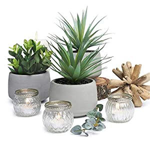 Set of 3 Artificial Succulents in Rustic pots. Lovely Quality Set of Faux Plants in Cement Looking pots. Potted Plant Trio. Lovely as a Table Centerpiece, Kitchen, Bathroom or Living Room