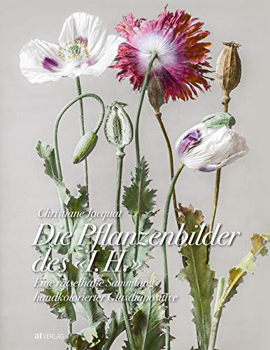 Die Pflanzenbilder des »I. H.«: Eine rätselhafte Sammlung handkolorierter Glasdiapositive