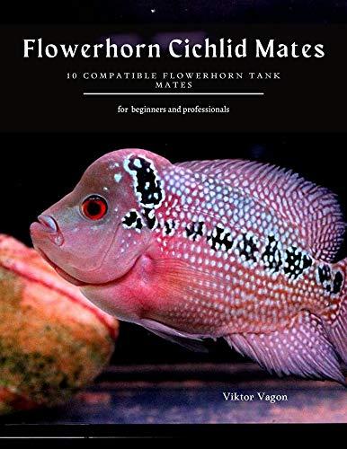 Flowerhorn Cichlid Mates: 10 Compatible Flowerhorn Tank Mates (English Edition)