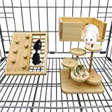 CAREUPET Hamster Cage Toy Set, Small Pet Wooden Platform, Climbing Ladders and Climbing Wall Toy Kits for Syrian Hamster, Rats, Lovebirds, Conure, Chinchilla, Bird Perches Stands Chewing Toys