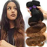 CRANBERRY Virgn Hair Ombre Body Wave Hair 3 Bundles Brazilian Remy Hair Body Wave Weaves, 100% Human Hair Extensions 3 Tone 1b/4/30 Color 100g/pc(10 12 14inch)
