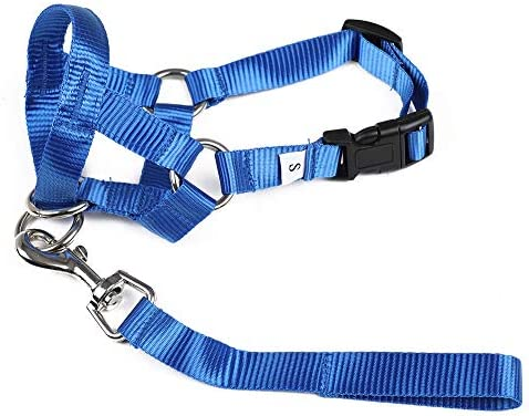 Gentle Leader Headcollar Collar Leash Harness Training for Large Medium and Small Dogs Blue product image