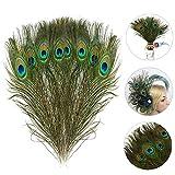 MWOOT 15 pcs Plumes de Paon Paon Plume Naturelles avec des Yeux, pour Bricolage décoration de la Maison de Bijoux Faire Artisanat (28-32CM)