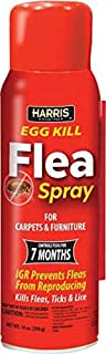 Harris Flea and Egg Killer, 14oz Aerosol Spray with 7-Month Residual for Carpets, Furniture and More