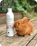 LT-Naturprodukte Shampoo per conigli | Biologico, senza agenti chimici e senza sapone, ipoallergenico | Contro il prurito | con argilla saponifera del Marocco | 250 ml | per pelo corto e lungo
