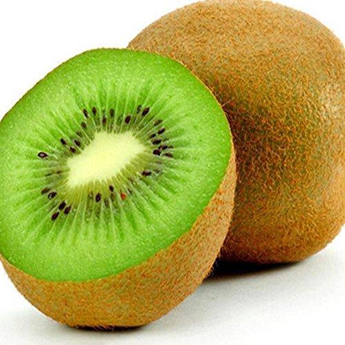 Lonlier Semillas de kiwi x 10/20/50 Paquete para Jardín Huerto Semillas Fruta Ecologica